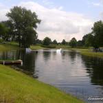 Park Kępa Potocka - stawik