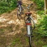 Z dzieckiem na rower – w Warszawie