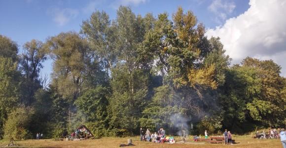 Polana w Parku Młocińskim