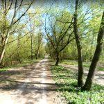 Najlepsza ścieżka rowerowa w Warszawie! Zdjęcia 360 stopni
