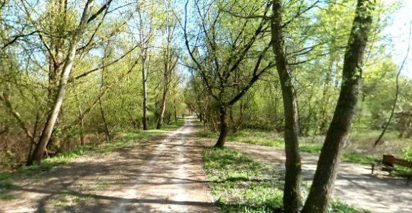 Najlepsza ścieżka rowerowa w Warszawie