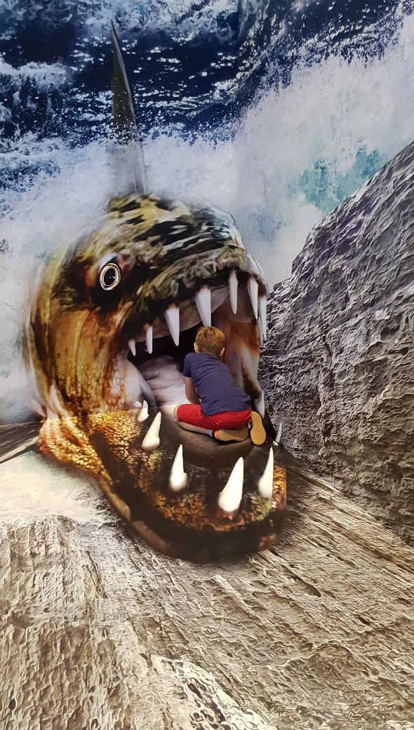 Iluzja Selfie PKIN