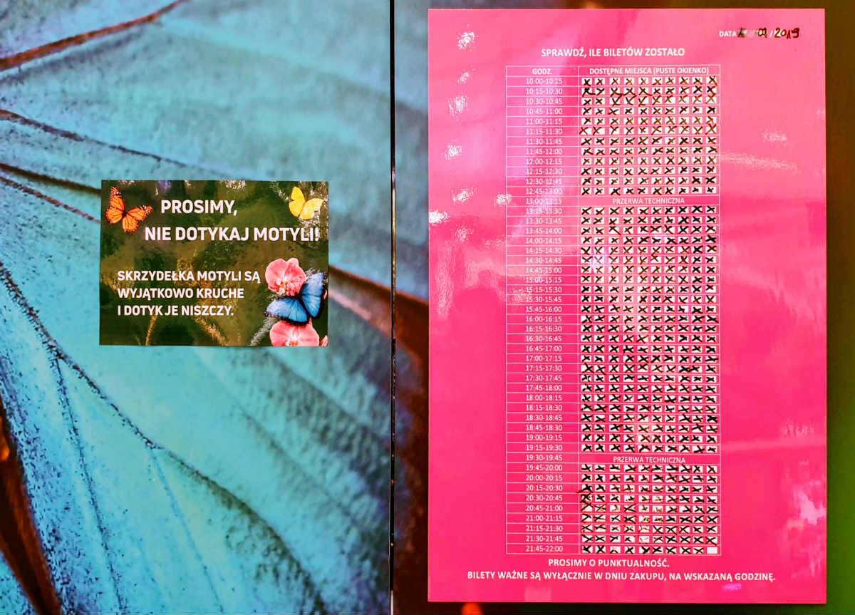 Motylarnia w Galerii Północnej bilety, wstęp