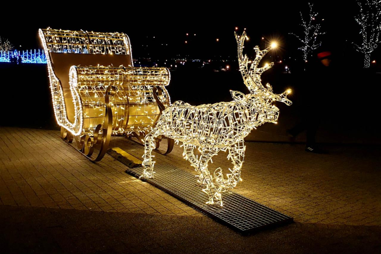 Multimedialny Park Fontann Zimą. Iluminacje zamiast wodnych pokazów – zdjęcia