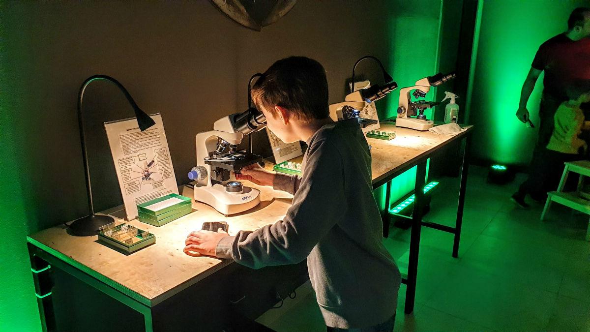 mikroskopy wystawa bezkregowcow w Galerii Polnocnej