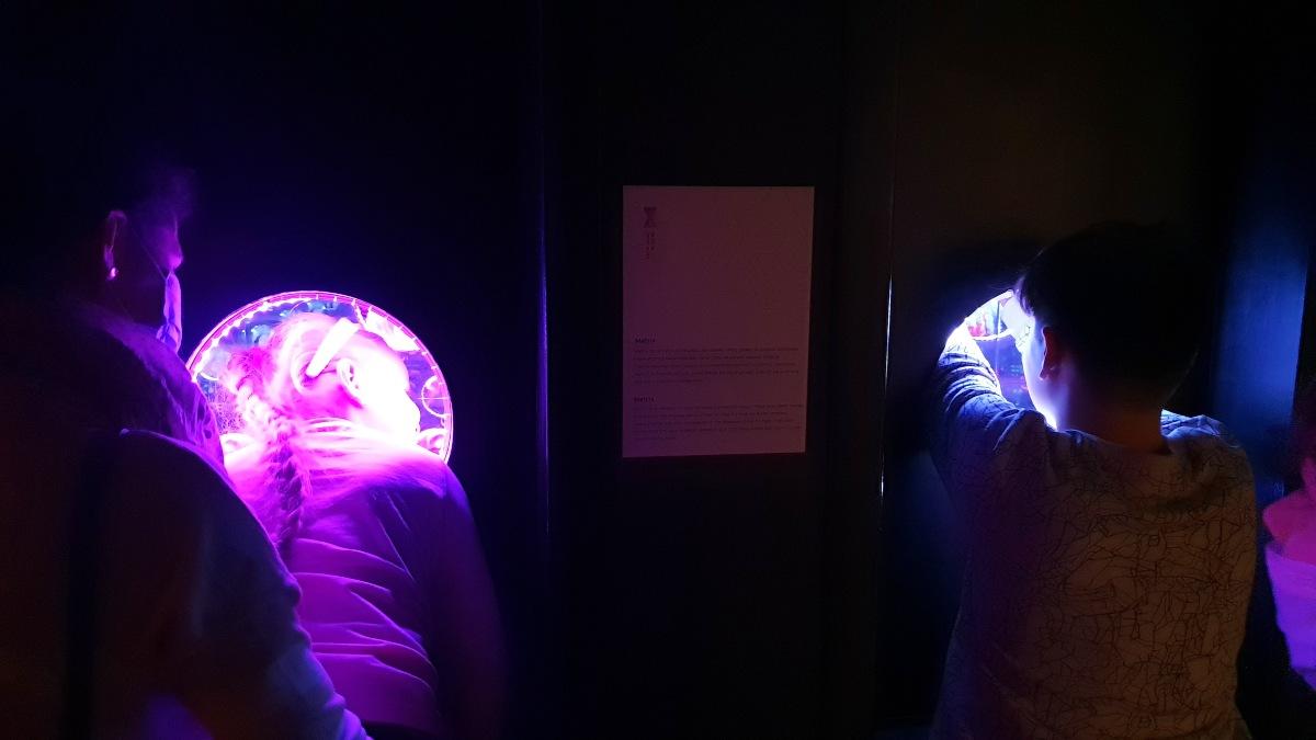 muzeum świat iluzji zdjecia